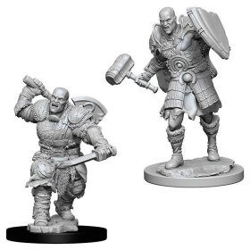 D&D Nolzur´s Min. Male Goliath Fighter