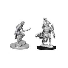 D&D Nolzur´s miniatuur Female Elf Fighter